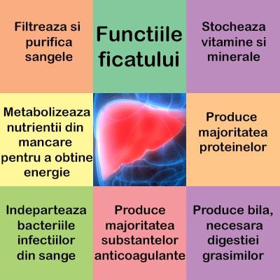 Steatoza hepatica (ficatul gras): Simptome, cauze si tratament