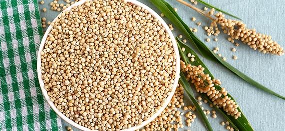 Totul despre sorg – o veche cereala care revine in atentie